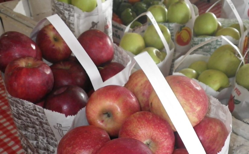 Local Apples, Now and in the Past